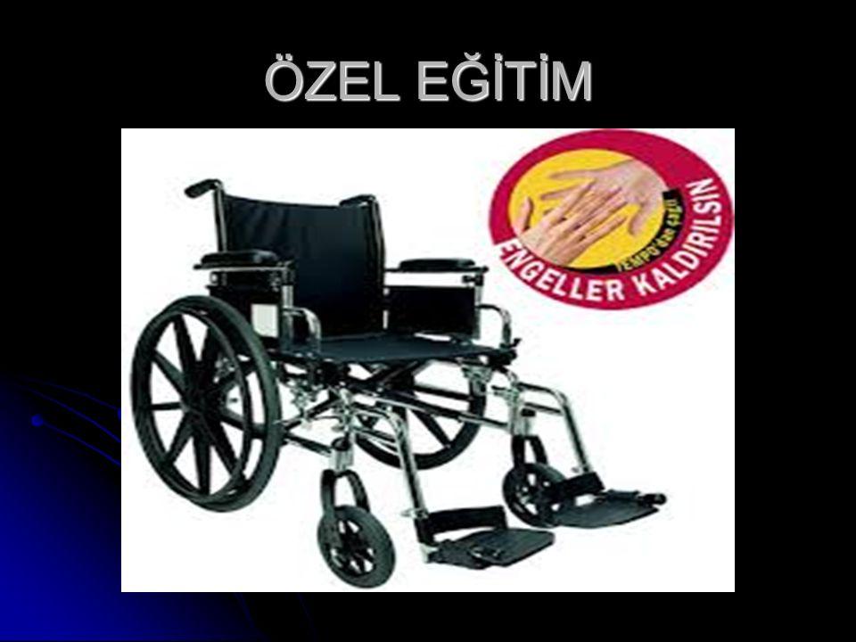 ÖZEL EĞİTİM