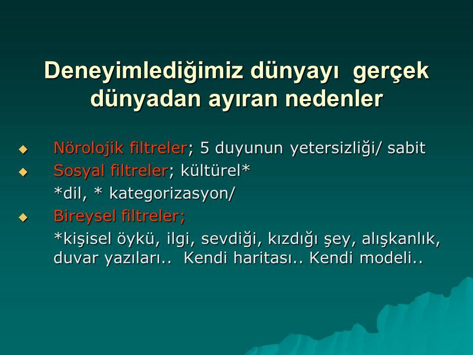 İyi kurulmuş bir cümle  Türkçesi iyi kurulmuş bir cümledir  Transformasyonel Silinmesi yoktur  Nominalizasyonu yoktur  Referansları tamdır..
