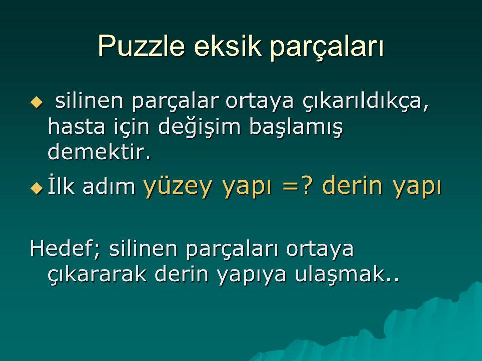 Puzzle eksik parçaları  silinen parçalar ortaya çıkarıldıkça, hasta için değişim başlamış demektir.