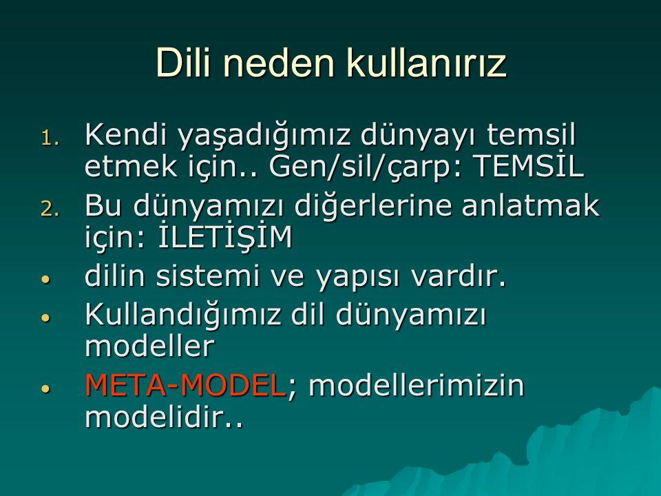 Meta-model  İnsanların dilin yapısı hakkında önsezileri vardır.