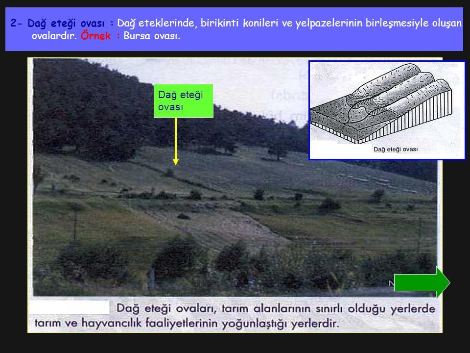 2- Dağ eteği ovası : Dağ eteklerinde, birikinti konileri ve yelpazelerinin birleşmesiyle oluşan ovalardır. Örnek : Bursa ovası. Dağ eteği ovası