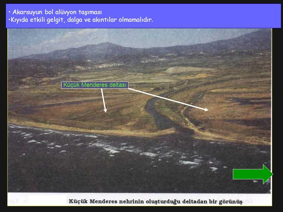 Akarsuyun bol alüvyon taşıması Kıyıda etkili gelgit, dalga ve akıntılar olmamalıdır. Küçük Menderes deltası