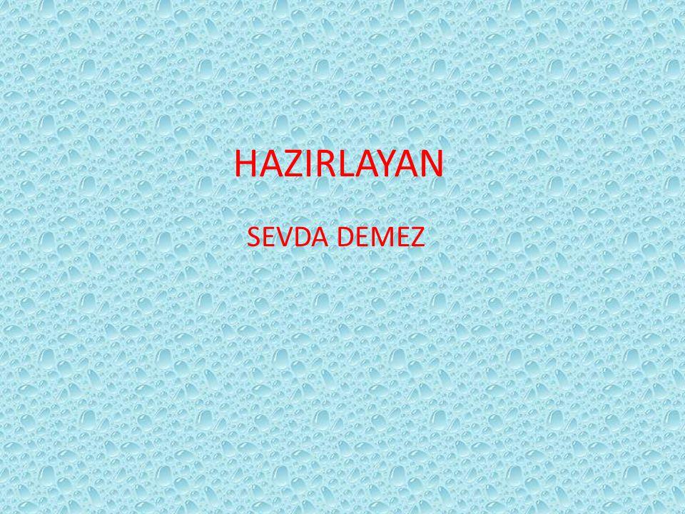 HAZIRLAYAN SEVDA DEMEZ