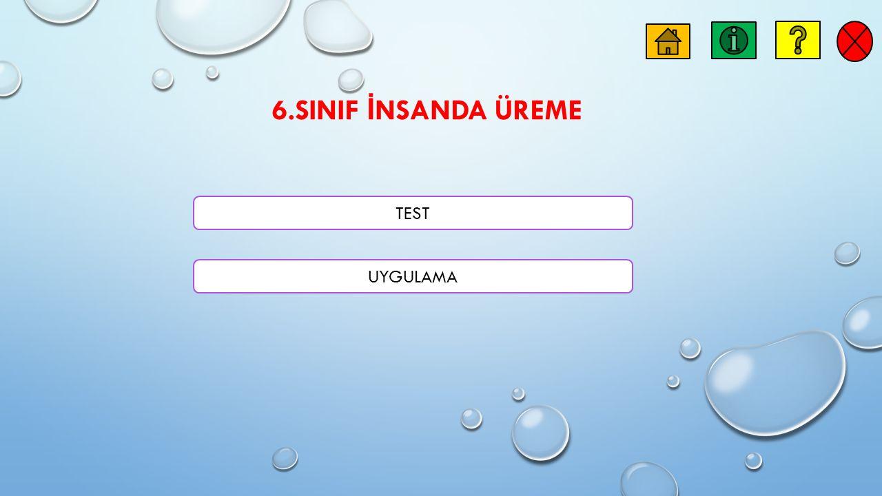 6.SINIF İ NSANDA ÜREME TEST UYGULAMA