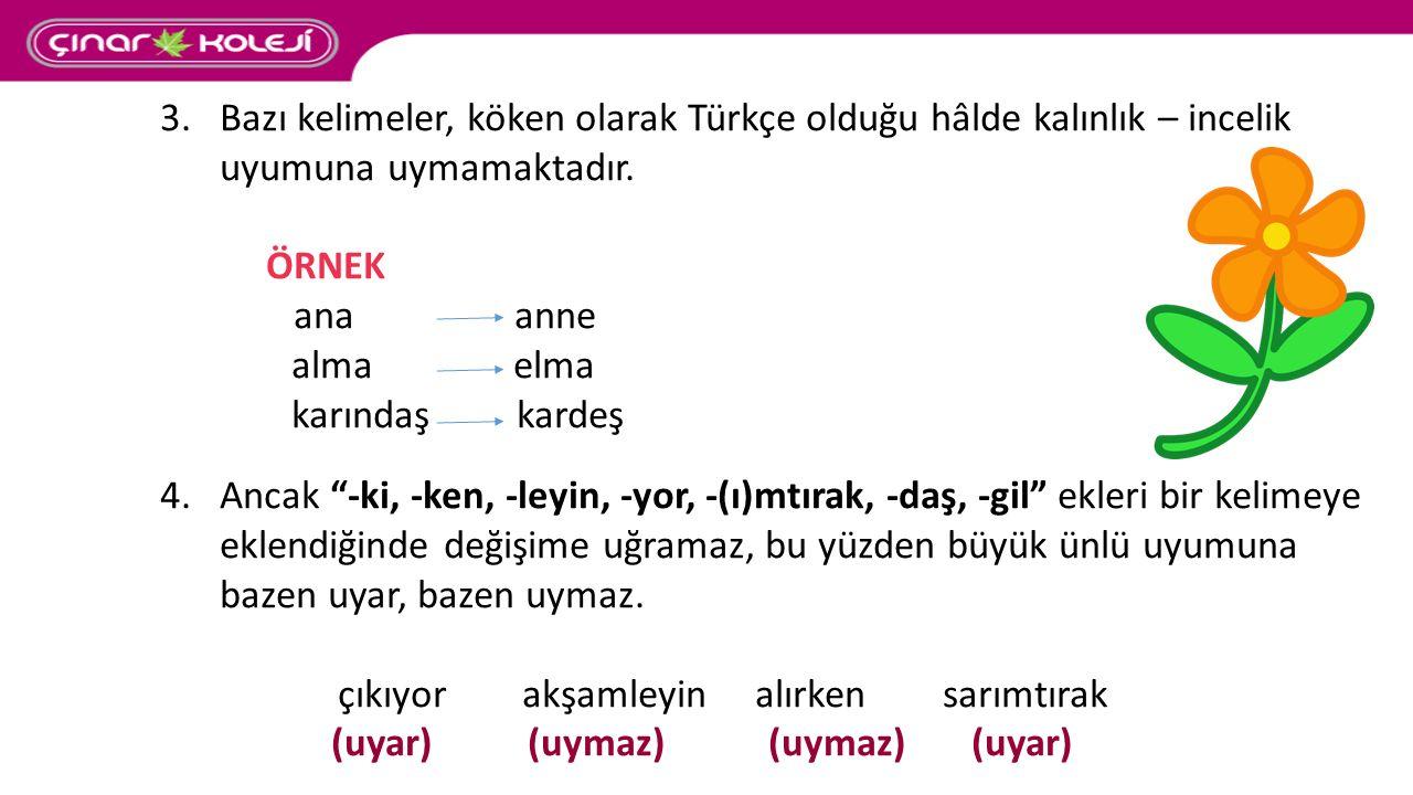"""3.Bazı kelimeler, köken olarak Türkçe olduğu hâlde kalınlık – incelik uyumuna uymamaktadır. ÖRNEK ana anne alma elma karındaş kardeş 4.Ancak """"-ki, -ke"""