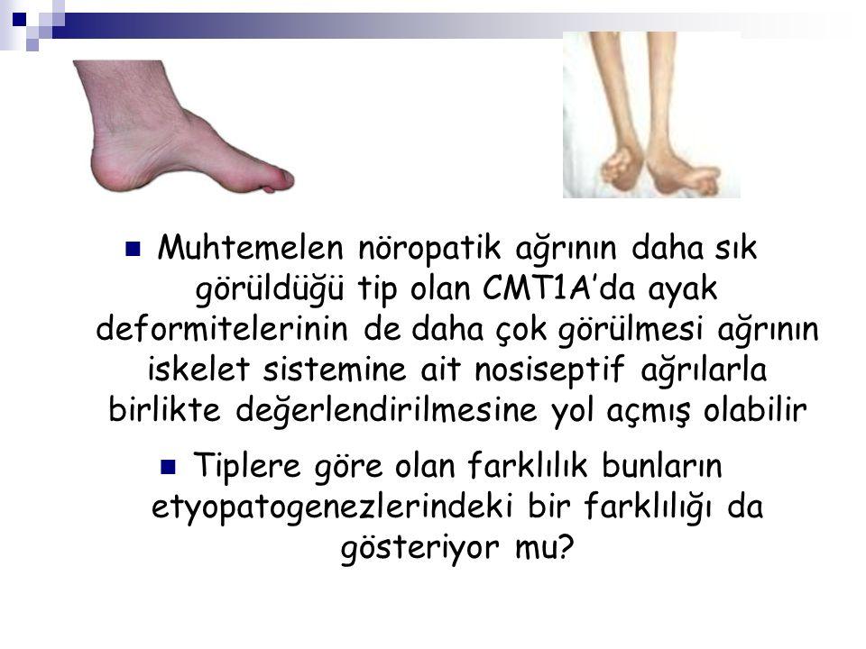 Muhtemelen nöropatik ağrının daha sık görüldüğü tip olan CMT1A'da ayak deformitelerinin de daha çok görülmesi ağrının iskelet sistemine ait nosiseptif ağrılarla birlikte değerlendirilmesine yol açmış olabilir Tiplere göre olan farklılık bunların etyopatogenezlerindeki bir farklılığı da gösteriyor mu?