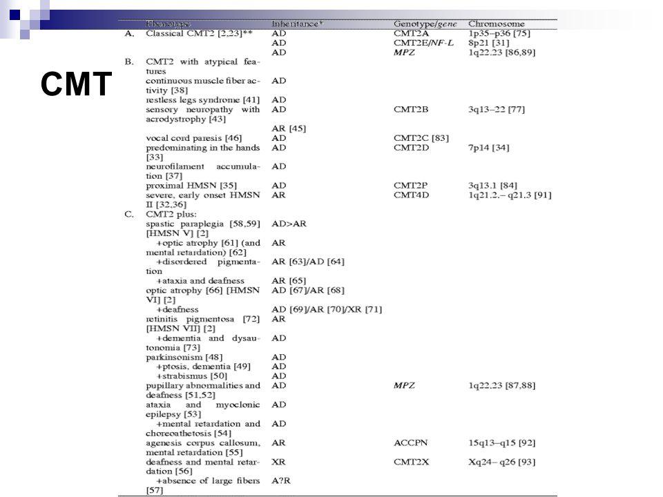 CMT + Intermediate NCV CMT + Intermediate NCV Dominant CMT DIA: 10q24 CMT DIB: DNM2; 19p12 CMT DIC: tyrosyl-tRNA synthetase; 1p34 CMT DI3: P 0 ; 1q22 CMT-X (Semi-dominant) CMT 2E: Neurofilament light chain; 8p21 Recessive CMT RIA: GDA P1; 8q21.1CMT DIACMT DIBCMT DICCMT DI3CMT-X (Semi-dominant)CMT 2ECMT RIA Charcot-Marie-Tooth (CMT) Features: Comparative; General External link: Mutation databaseComparativeGeneralMutation database CMT & HMSN: Demyelinating Dominant CMT 1A: PMP-22; 17p11 CMT 1B: P 0 protein; 1q22 CMT 1C: LITAF; 16p13 CMT 1D: EGR2; 10q21 CMT 1E: P 0 protein; 1q22 CMT 1F: Neurofilament light chain; 8p21 HNPP: PMP-22 deletion; 17p11 HMSN 3 (Dejerine-Sottas) PMP-22; P 0 ; 8q23; EGR2 Thermosensitive PNS & CNS hypomyelination: SOX10; 22q13 Sensory PN + hearing loss: Connexin-31; 1p35 Hypomyelin, No symptoms: ARHGEF10; 8p23 Recessive CMT 4A: GDA P1; 8q21.1 CMT 4B: MTMR2; 11q23 CMT 4B2: SBF2; 11p15 CMT 4C: KIAA1985; 5q23-q33 CMT 4D (Lom): NDRG1; 8q24 CMT 4E: EGR2; 10q21 CMT 4F: Periaxin; 19q13 HMSN-Russe: 10q23 CMT 4H: 12q12 HMSN 3 (Dejerine-Sottas) P 0 ; PMP-22; EGR2; Periaxin HMSN + Juvenile glaucoma Cataracts (CCFDN): CTDP1; 18qter Cockayne s: 5 Congenital hypomyelinating P 0, PMP-22 & EGR-2 Farber s lipogranulomatosis: Ceramidase; 8p22 Glycosylation deficient, Ia: PMM2; 16p13 Krabbe: GALC; 14q31 MLD: ARSA; 22q13 PMP-22 point mutations Refsum s disease Childhood: PHYH; 10pter-p11.2 Adolescent-Adult: PEX7; 6q22 Infant: PEX1; 7q21 HMSN + CNS: Heterogeneous X-linked Connexin-32 Pyramidal signsCMT 1ACMT 1BCMT 1CCMT 1DCMT 1ECMT 1FHNPPHMSN 3P 08q23EGR2ThermosensitivePNS & CNS hypomyelinationSensory PN + hearing lossHypomyelin, No symptomsCMT 4ACMT 4BCMT 4B2CMT 4CCMT 4D (Lom)CMT 4ECMT 4FHMSN-RusseCMT 4HHMSN 3P 0PMP-22EGR2PeriaxinHMSN + Juvenile glaucomaCataracts (CCFDN)Cockayne sCongenital hypomyelinatingFarber s lipogranulomatosisGlycosylation deficient, IaKrabbeMLDPMP-22 point mutationsChildhoodAdolescent-AdultInfantHMSN + CNSX-linkedConnexin-32Pyramidal signs C