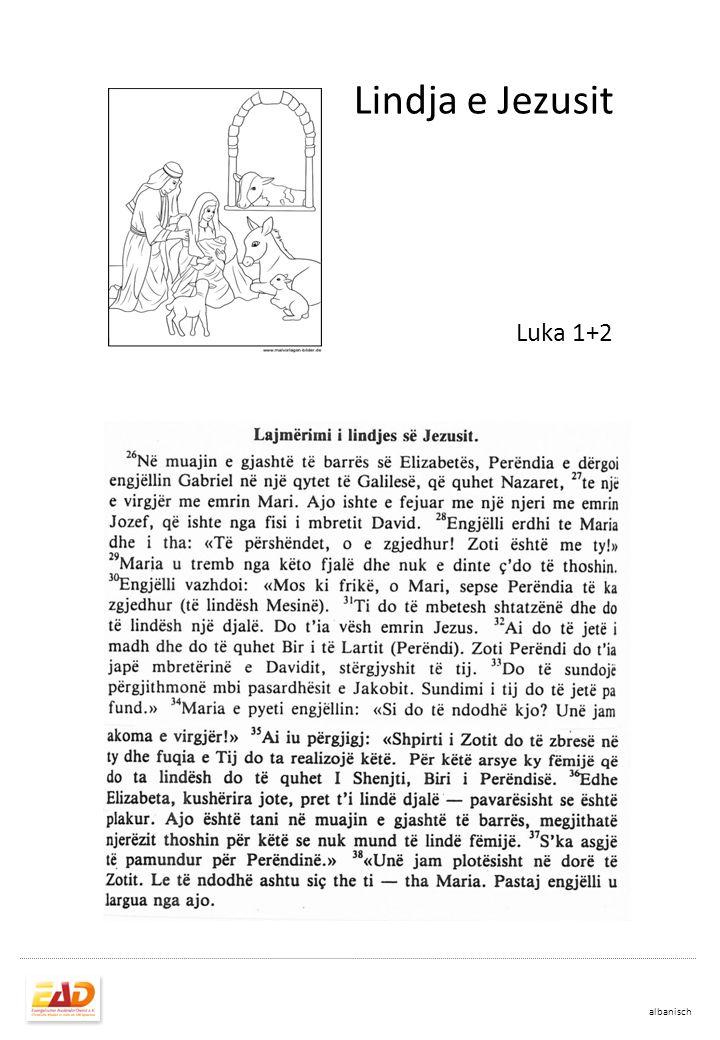 Lindja e Jezusit, Mesisë