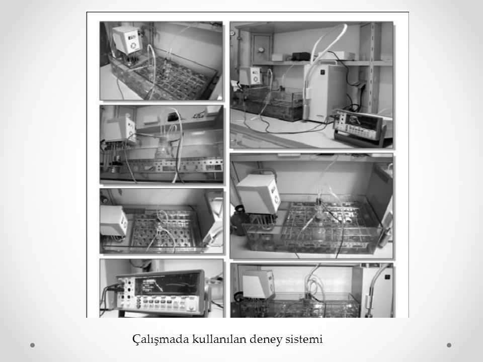 Çalışmada kullanılan deney sistemi