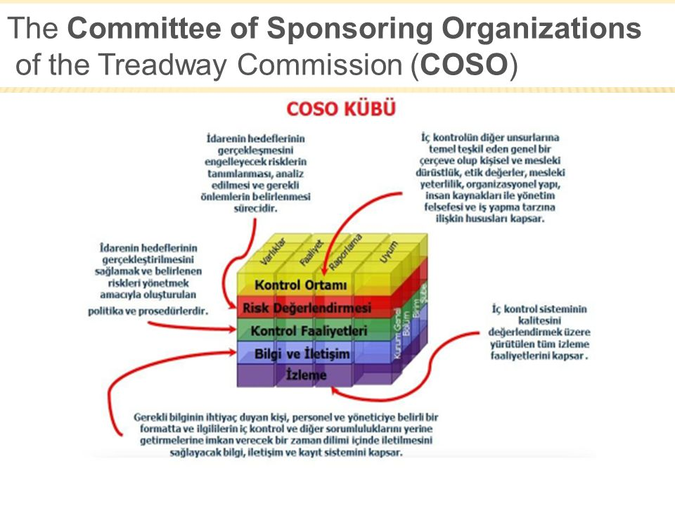 The Committee of Sponsoring Organizations of the Treadway Commission (COSO)