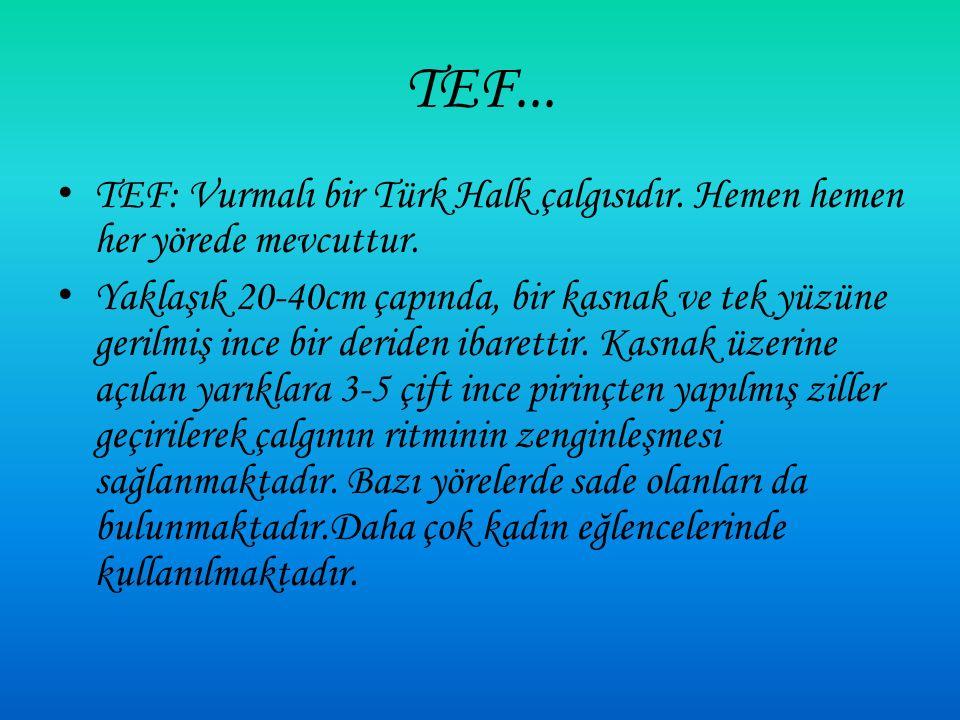 TEF: Vurmalı bir Türk Halk çalgısıdır.Hemen hemen her yörede mevcuttur.