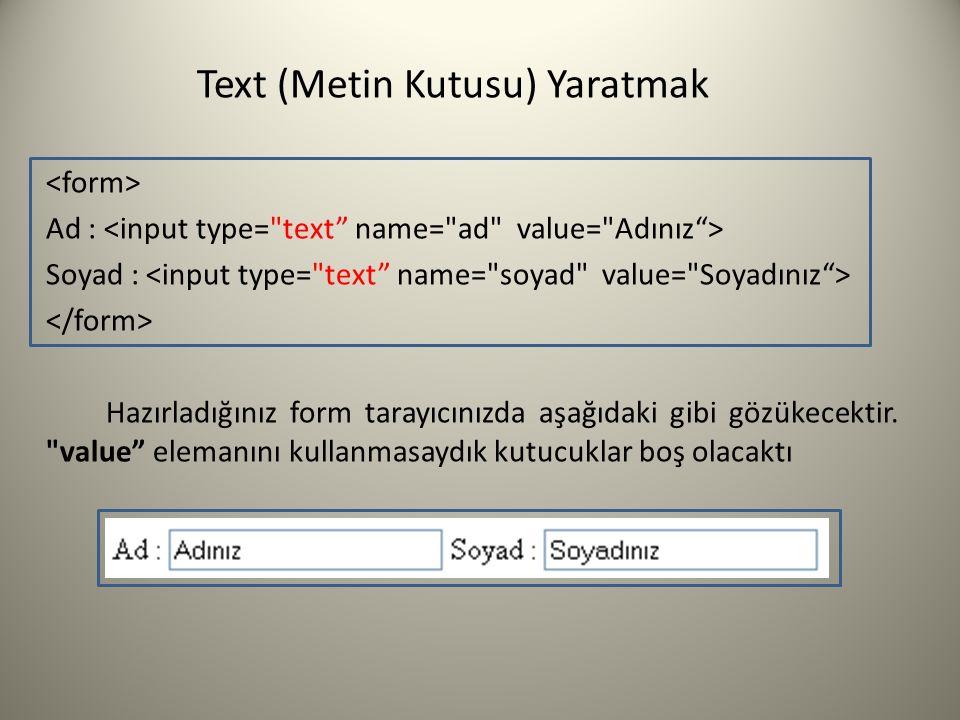 Text (Metin Kutusu) Yaratmak Ad : Soyad : Hazırladığınız form tarayıcınızda aşağıdaki gibi gözükecektir.