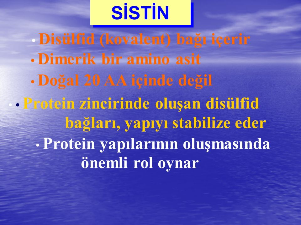 SİSTİN Disülfid (kovalent) bağı içerir Dimerik bir amino asit Doğal 20 AA içinde değil Protein zincirinde oluşan disülfid bağları, yapıyı stabilize ed