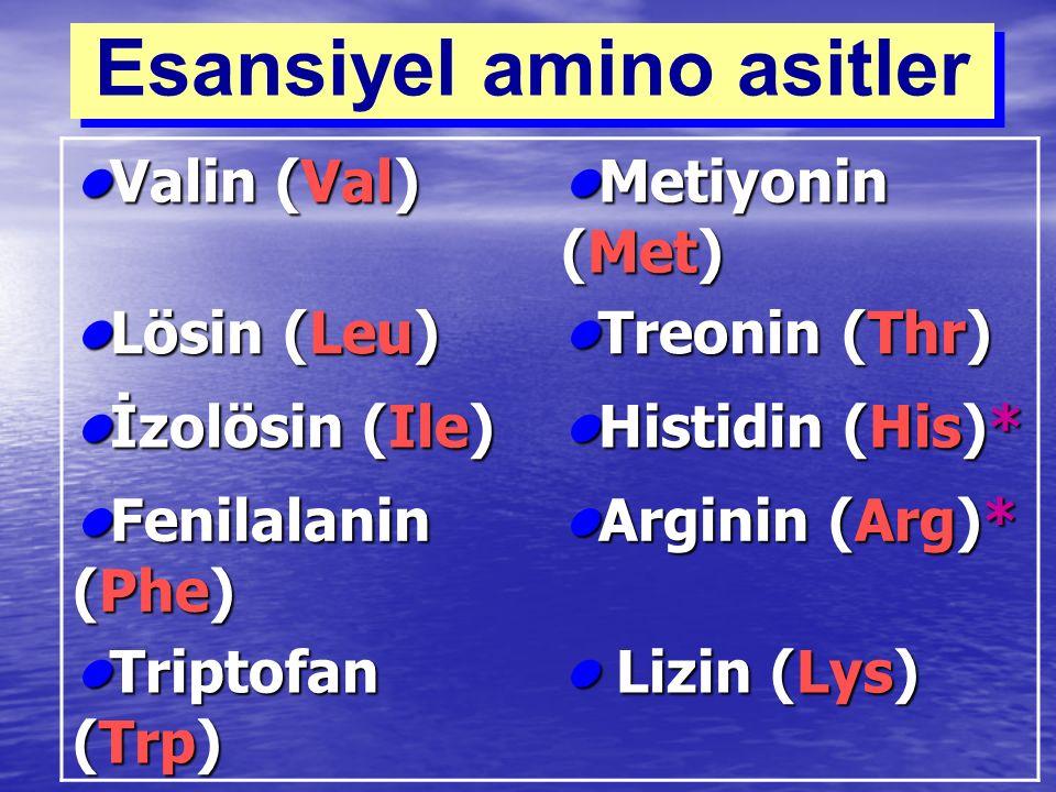 Esansiyel amino asitler Valin (Val)Valin (Val) Metiyonin (Met)Metiyonin (Met) Lösin (Leu)Lösin (Leu) Treonin (Thr)Treonin (Thr) İzolösin (Ile)İzolösin