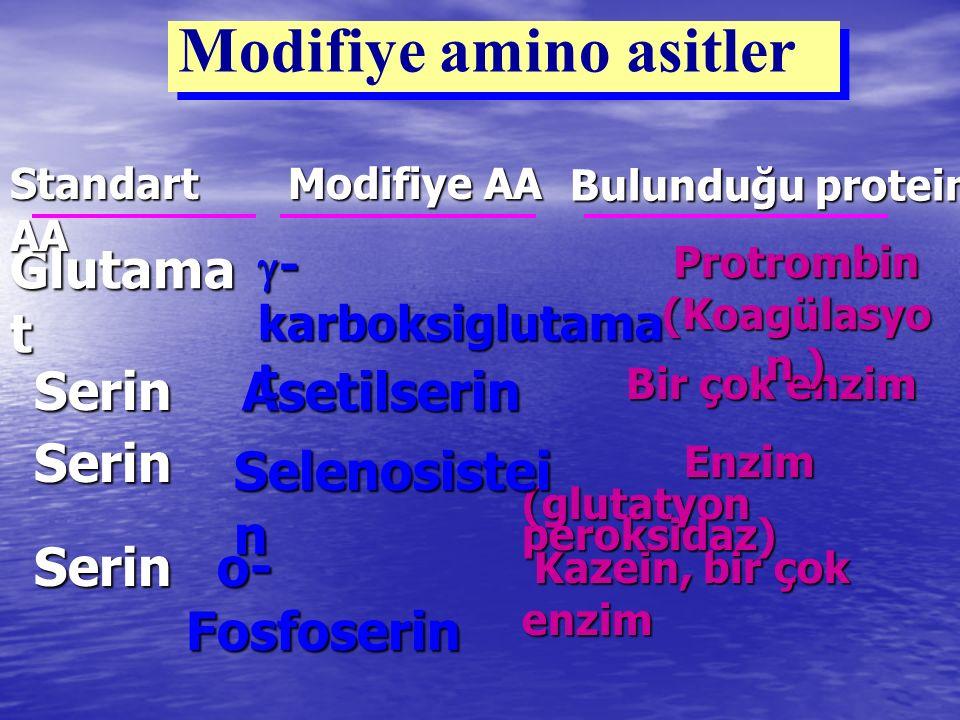 Modifiye amino asitler Kazein, bir çok enzim Kazein, bir çok enzim o- Fosfoserin o- FosfoserinSerin Enzim Enzim (glutatyon peroksidaz) Selenosistei n