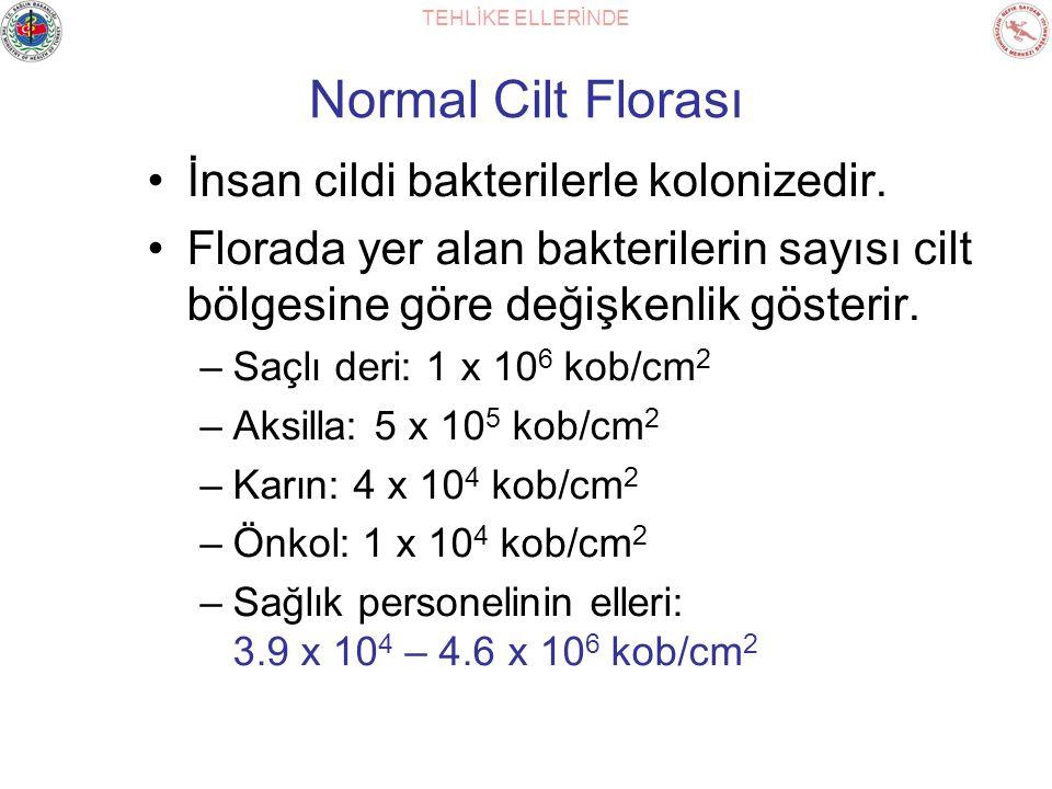 TEHLİKE ELLERİNDE Normal Cilt Florası İnsan cildi bakterilerle kolonizedir. Florada yer alan bakterilerin sayısı cilt bölgesine göre değişkenlik göste