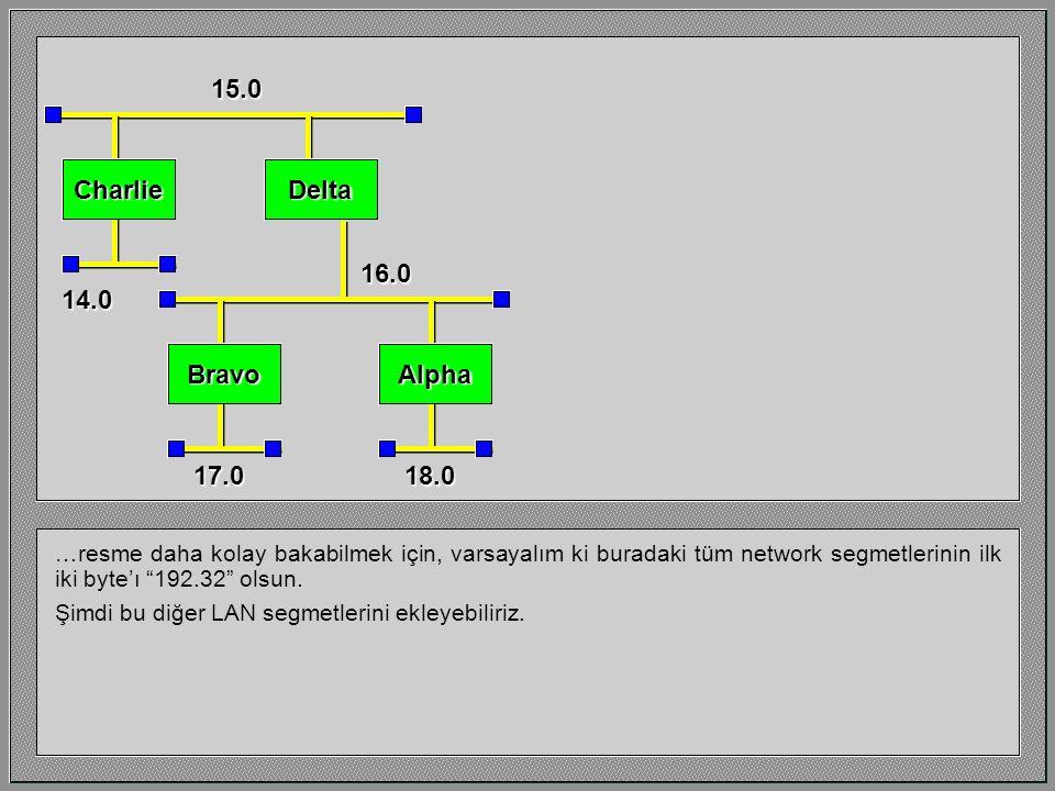 …resme daha kolay bakabilmek için, varsayalım ki buradaki tüm network segmetlerinin ilk iki byte'ı 192.32 olsun.