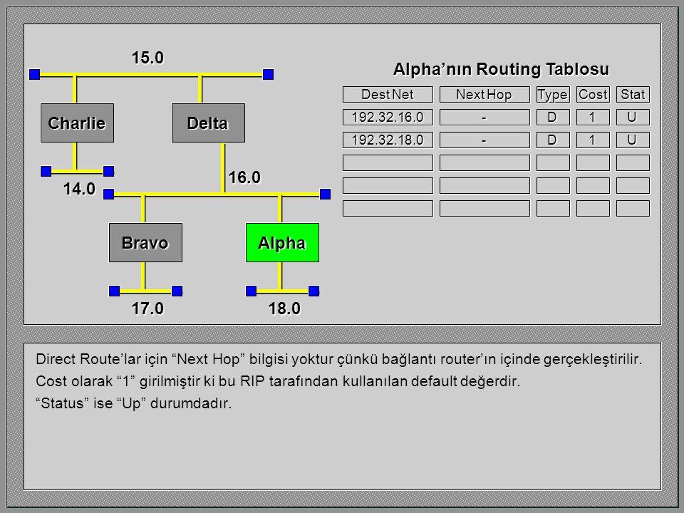 Router Alpha'nın çalıştığı network'ü ele alalım.