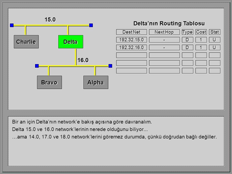 Bir an için Delta'nın network'e bakış açısına göre davranalım.