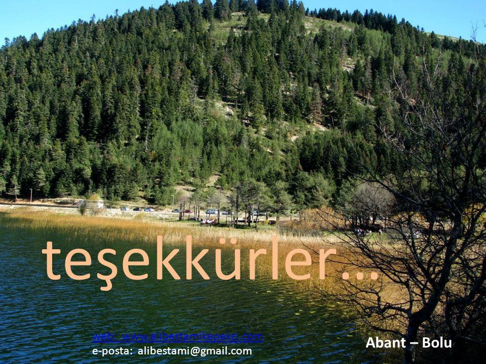 teşekkürler… Abant – Bolu web: www.alibestamikepekci.com e-posta: alibestami@gmail.com