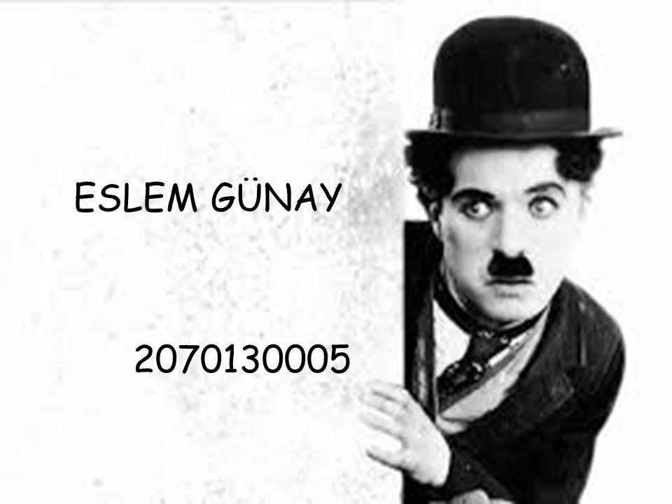 ESLEM GÜNAY 2070130005