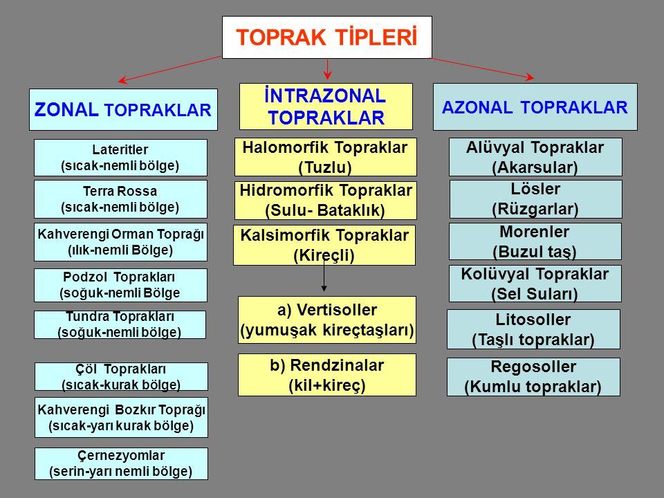TOPRAK TİPLERİ ZONAL TOPRAKLAR İNTRAZONAL TOPRAKLAR AZONAL TOPRAKLAR Lateritler (sıcak-nemli bölge) Terra Rossa (sıcak-nemli bölge) Kahverengi Orman T