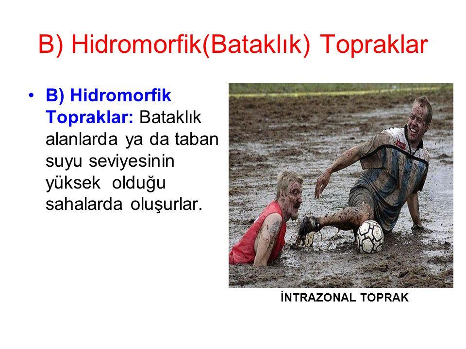 B) Hidromorfik(Bataklık) Topraklar B) Hidromorfik Topraklar: Bataklık alanlarda ya da taban suyu seviyesinin yüksek olduğu sahalarda oluşurlar. İNTRAZ