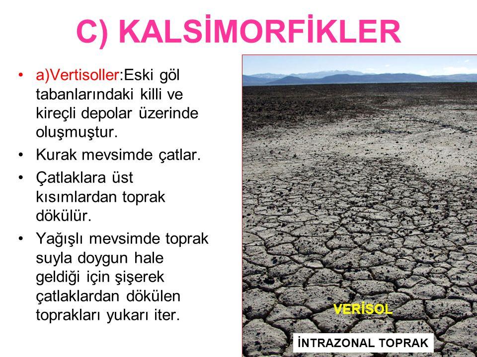 C) KALSİMORFİKLER a)Vertisoller:Eski göl tabanlarındaki killi ve kireçli depolar üzerinde oluşmuştur. Kurak mevsimde çatlar. Çatlaklara üst kısımlarda