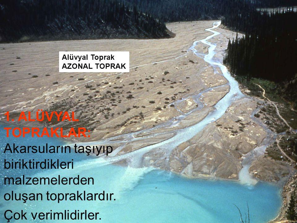 Alüvyal Toprak AZONAL TOPRAK 1. ALÜVYAL TOPRAKLAR: Akarsuların taşıyıp biriktirdikleri malzemelerden oluşan topraklardır. Çok verimlidirler.