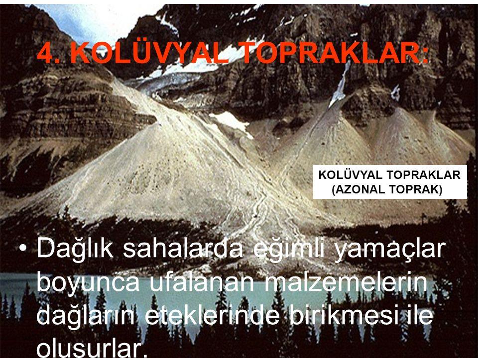 KOLÜVYAL TOPRAKLAR (AZONAL TOPRAK) 4. KOLÜVYAL TOPRAKLAR: Dağlık sahalarda eğimli yamaçlar boyunca ufalanan malzemelerin dağların eteklerinde birikmes