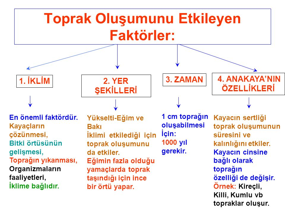 Alüvyal Toprak AZONAL TOPRAK 1.