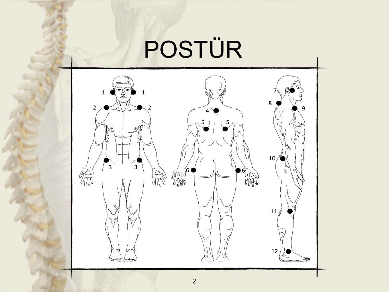 3 Postür: Vücudun her kısmının kendine bitişik olan segmente ve bütün vücuda oranla en uygun pozisyonda yerleşmesidir.