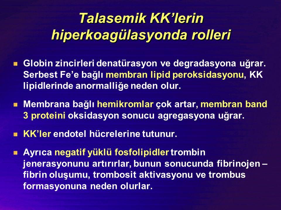 Talasemik KK'lerin hiperkoagülasyonda rolleri Globin zincirleri denatürasyon ve degradasyona uğrar. Serbest Fe'e bağlı membran lipid peroksidasyonu, K