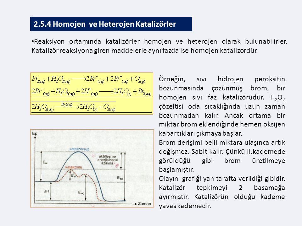 2.5.4 Homojen ve Heterojen Katalizörler Reaksiyon ortamında katalizörler homojen ve heterojen olarak bulunabilirler.