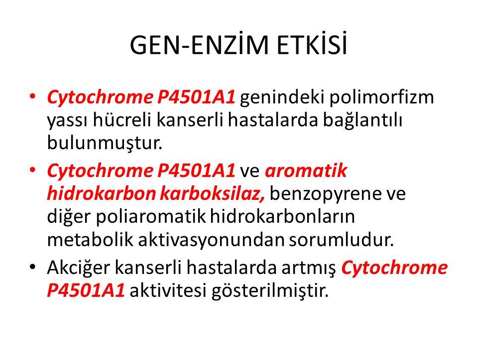 GEN-ENZİM ETKİSİ Cytochrome P4501A1 genindeki polimorfizm yassı hücreli kanserli hastalarda bağlantılı bulunmuştur. Cytochrome P4501A1 ve aromatik hid