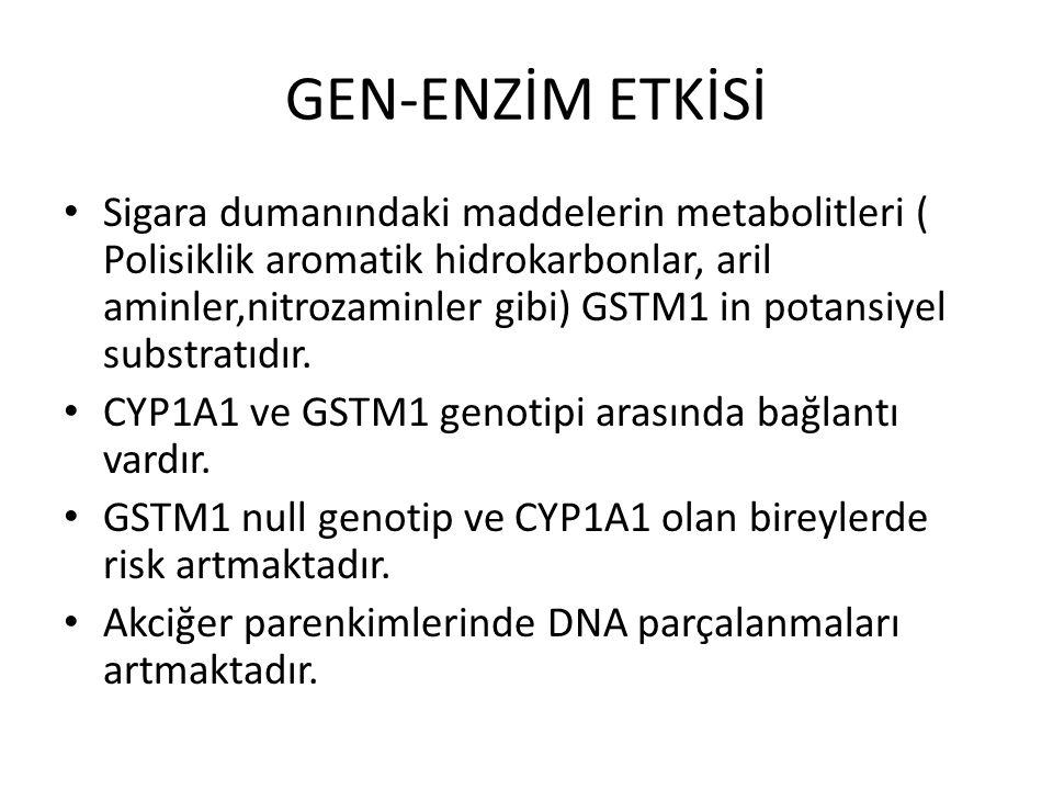 GEN-ENZİM ETKİSİ Sigara dumanındaki maddelerin metabolitleri ( Polisiklik aromatik hidrokarbonlar, aril aminler,nitrozaminler gibi) GSTM1 in potansiye