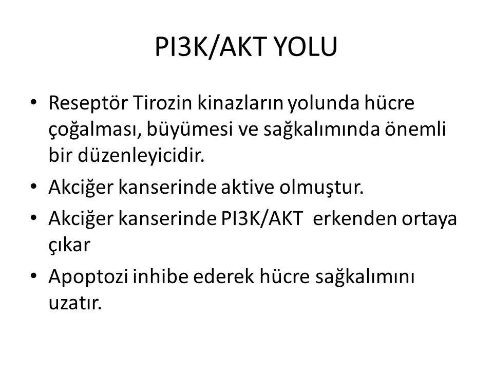 PI3K/AKT YOLU Reseptör Tirozin kinazların yolunda hücre çoğalması, büyümesi ve sağkalımında önemli bir düzenleyicidir. Akciğer kanserinde aktive olmuş