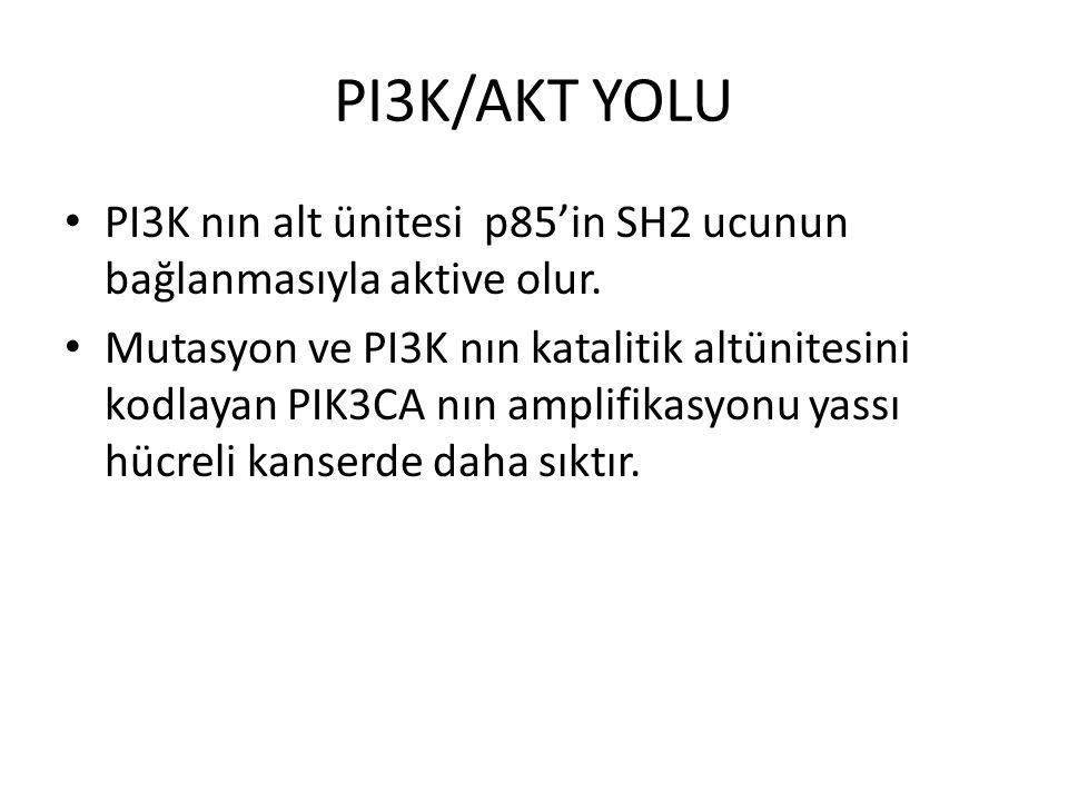 PI3K/AKT YOLU PI3K nın alt ünitesi p85'in SH2 ucunun bağlanmasıyla aktive olur. Mutasyon ve PI3K nın katalitik altünitesini kodlayan PIK3CA nın amplif