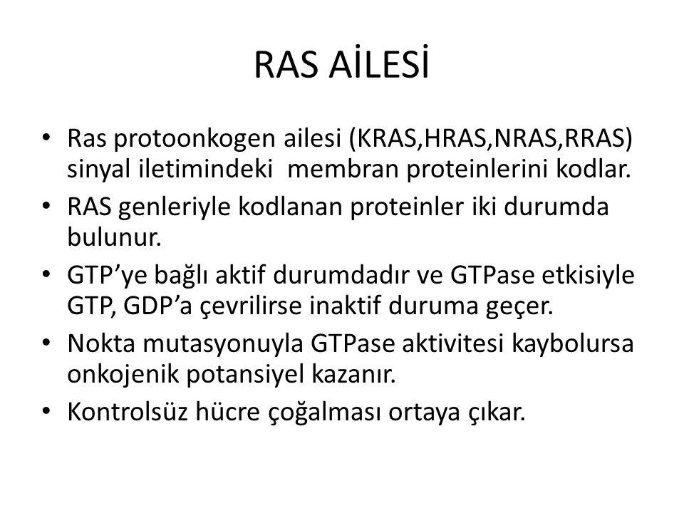 RAS AİLESİ Ras protoonkogen ailesi (KRAS,HRAS,NRAS,RRAS) sinyal iletimindeki membran proteinlerini kodlar. RAS genleriyle kodlanan proteinler iki duru