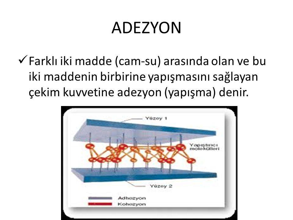 ADEZYON Farklı iki madde (cam-su) arasında olan ve bu iki maddenin birbirine yapışmasını sağlayan çekim kuvvetine adezyon (yapışma) denir.