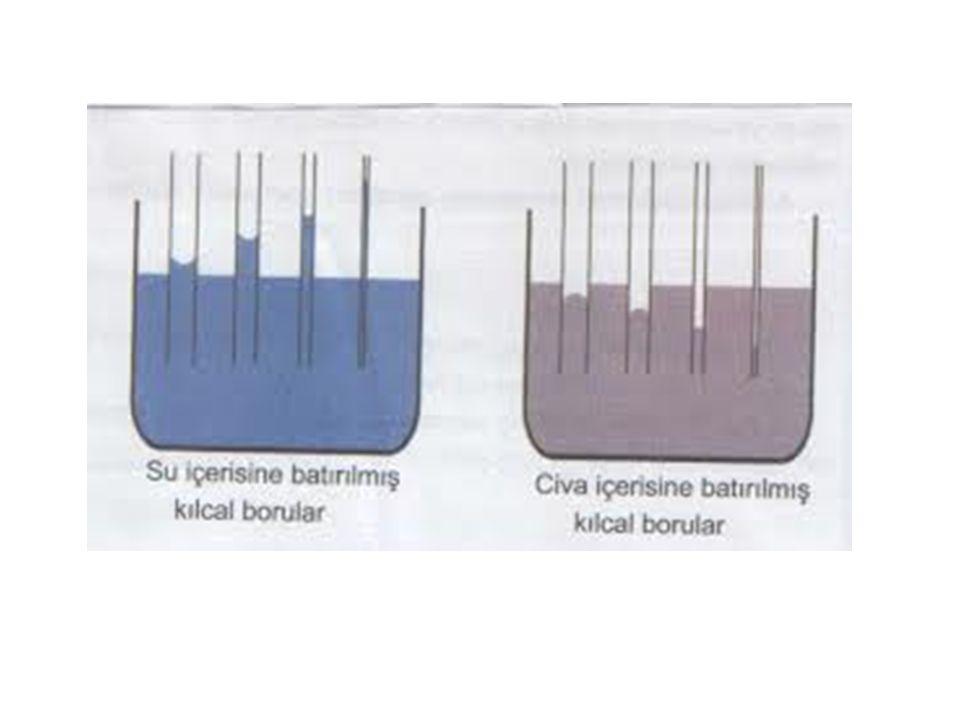 Not: Kohezyon katı ve sıvılarda etkilidir.Gazlarda ihmal edilir.