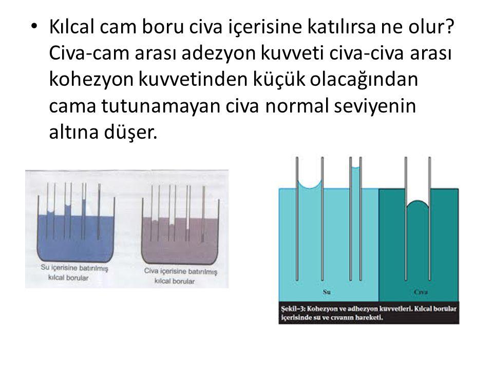 Kılcal cam boru civa içerisine katılırsa ne olur? Civa-cam arası adezyon kuvveti civa-civa arası kohezyon kuvvetinden küçük olacağından cama tutunamay