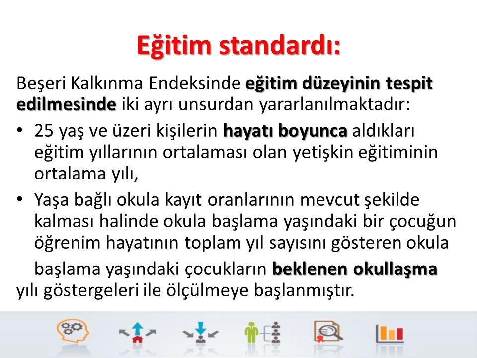 Eğitim standardı: eğitim düzeyinin tespit edilmesinde Beşeri Kalkınma Endeksinde eğitim düzeyinin tespit edilmesinde iki ayrı unsurdan yararlanılmakta