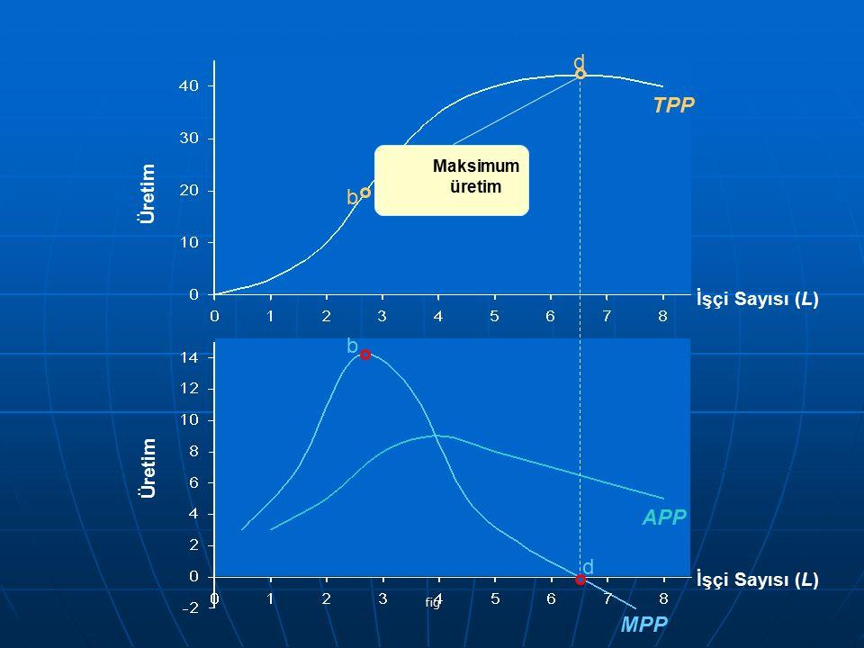 fig Üretim TPP Üretim APP MPP b d d İşçi Sayısı (L) Maksimum üretim b