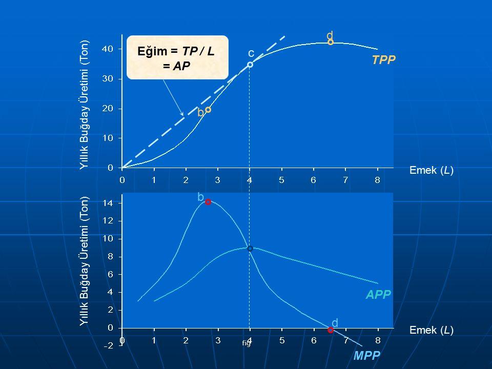 fig c c Yıllık Buğday Üretimi (Ton) TPP APP MPP b b d d Emek (L) Eğim = TP / L = AP Yıllık Buğday Üretimi (Ton)