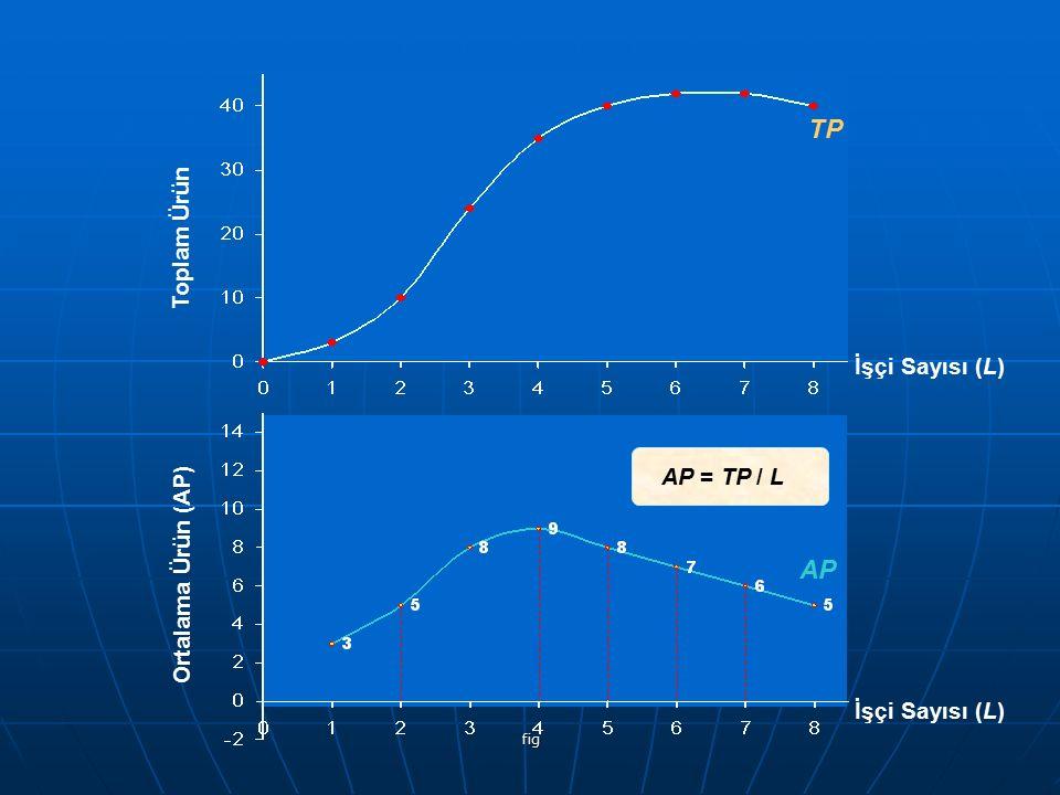 fig Toplam Ürün TP Ortalama Ürün (AP) AP AP = TP / L İşçi Sayısı (L)