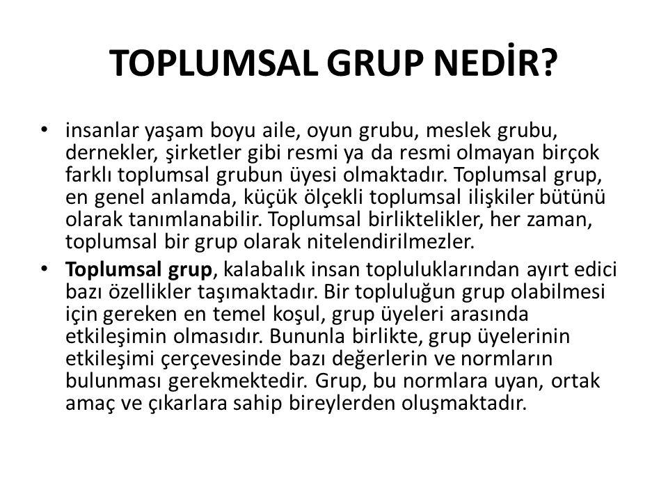 TOPLUMSAL GRUP NEDİR.