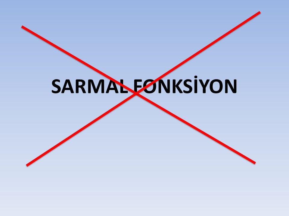 SARMAL FONKSİYON