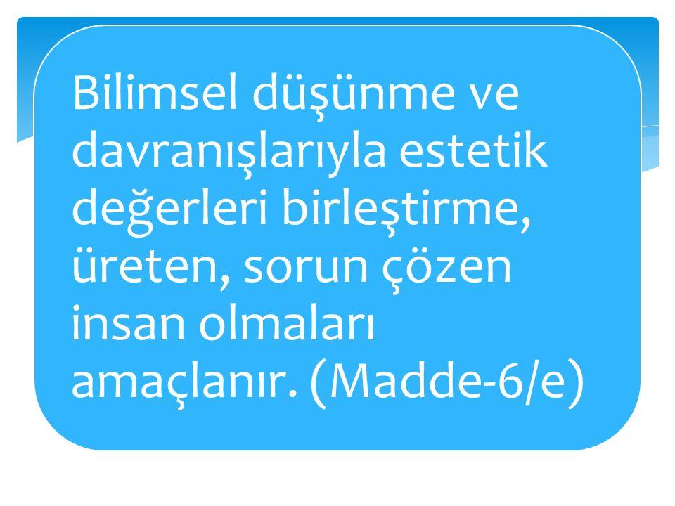 DESTEK DÖNEMİ Fen Bilgisi, Matematik, Türkçe, Sosyal Bilimler, İngilizce, Bilgisayar, Resim, Müzik.