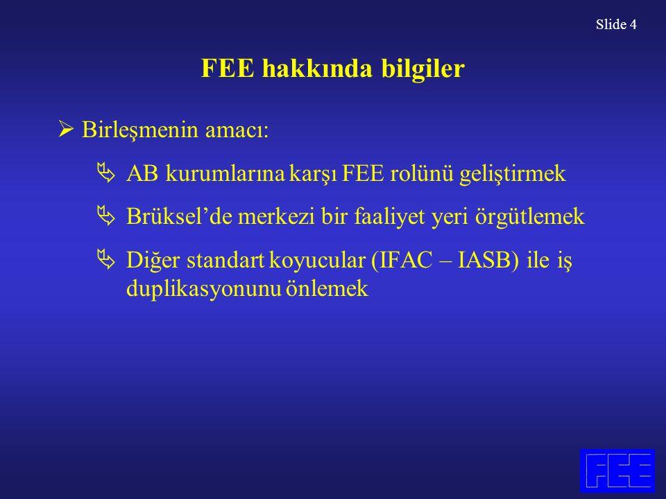 Slide 15 Mesleğin Gelişimi  FEE bir standart koyucu değildir  FEE, eğitim programlarıyla doğrudan ilgilenmez.